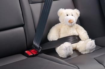 Teddy im Auto