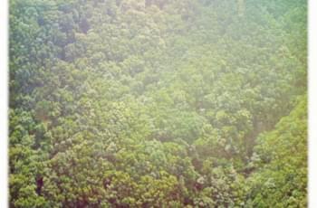 Grünes Anaga Gebirge