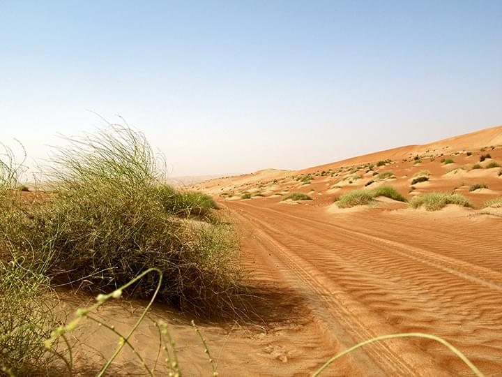 Wahiba Sands: Der Weg in die Wüste