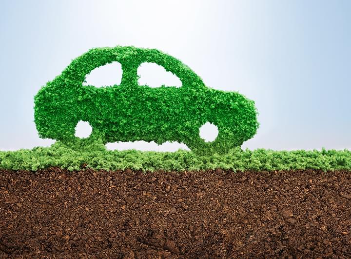 Auto aus Gras