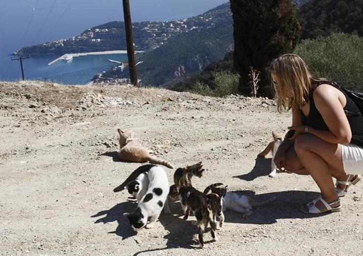 Frau mit Katzen in Kefalonia